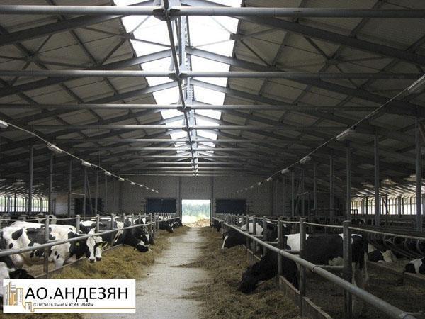 Ангар для скота видео
