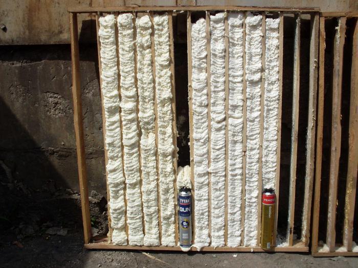 Как убрать плесень в углу дома